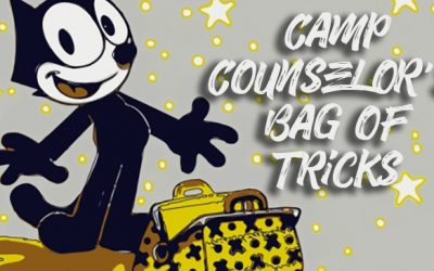 The Counselor's Bag of Tricks